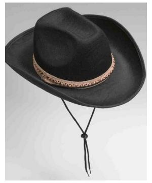 Felt Cowboy Adult Hat