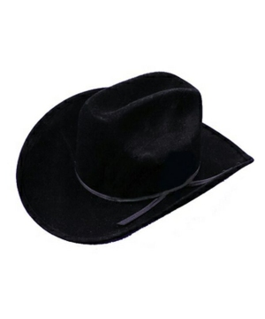 Cowboy Hat Black Felt Costume Accessory