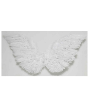 Classic Angel Wings Adult Accessory