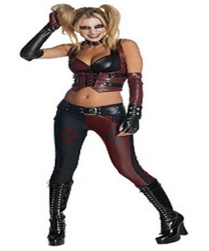 Batman Arkham City Harley Quinn Adult Costume