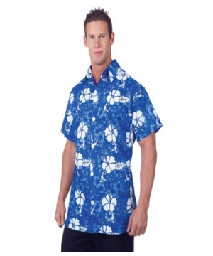 Hawaiian Adult Costume