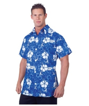 Hawaiian Adult plus size Costume