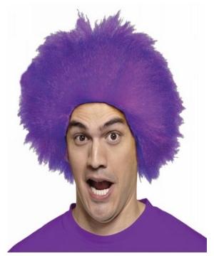 Fun Purple Adult Wig