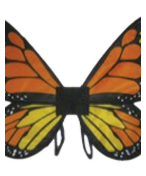 Baby/kids Orange Satin Butterfly Wings