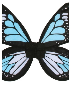 Adult Blue Satin Butterfly Wings