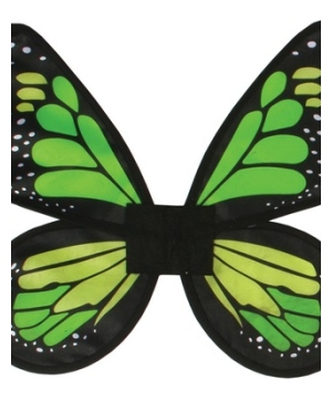 wings butterfly satin green