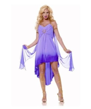 Roman Goddess Ladies Costume