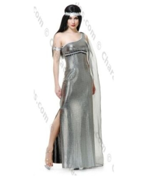 Goddess of the Night Adult Costume