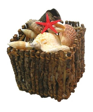 Shell Crate Decoration