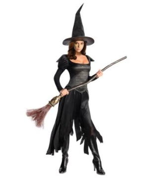 Wizard of Oz Wicked Witch Women Costume