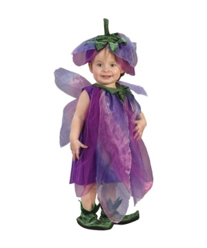 Sugar Plum Fairy Baby Costume