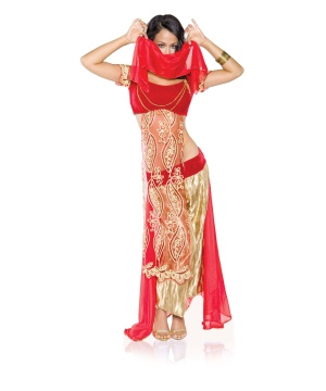 Jewel of the Desert Dancer Womens Costume