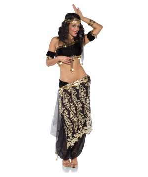 Shimmer Womens Dancer Costume