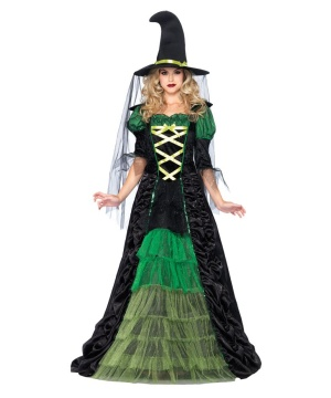 Storybook Witch Womens Costume deluxe
