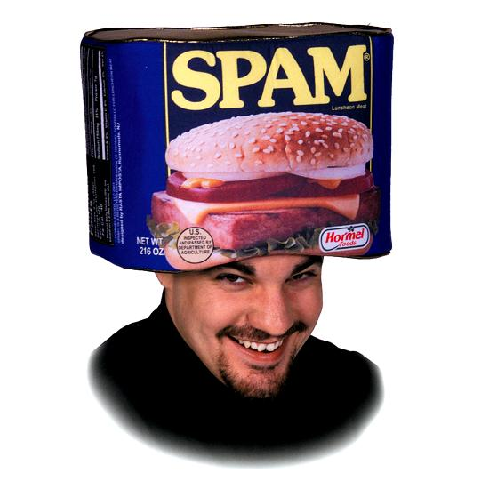 Spam Hat Men Halloween Costume