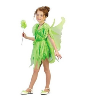 Neverland Fairy Girls Costume