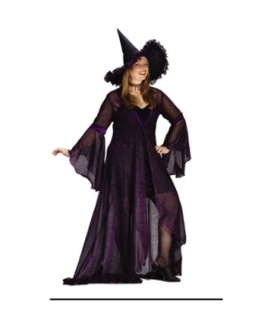 Shimmering Witch Adult plus size