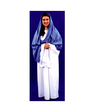 Mary Costume - Adult Costume
