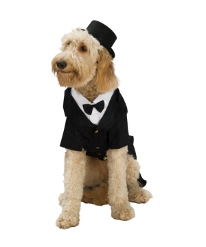 Dapper Pet Costume