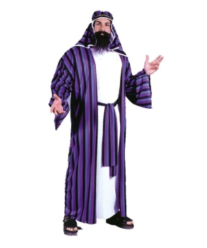 Chic Sheik Adult plus size Costume
