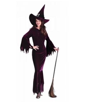 Elegant Plum Witch Women Costume