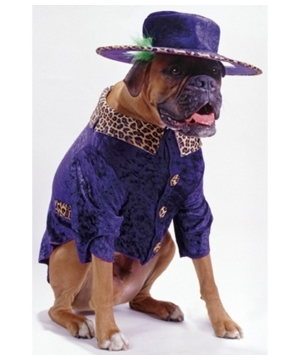 Big Daddy Dog Pet Costume