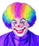 Rainbow Clown Wig - Adult Wig