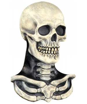 Skull and Bones Mask - Adult Mask