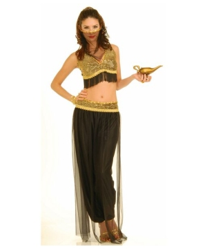 Harem Dancer Womens Costume