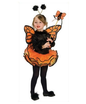 Butterfly Costume - Toddler/girl Costume