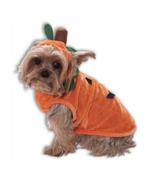 Pumpkin Pet Costume