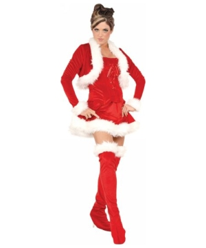 Ms Claus Womens Costume