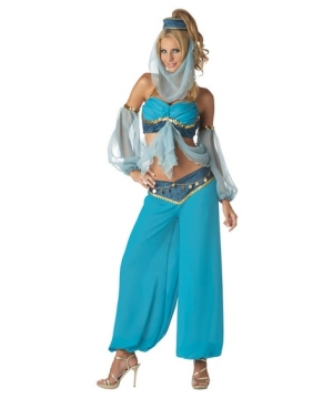 Harem Genie Womens Costume