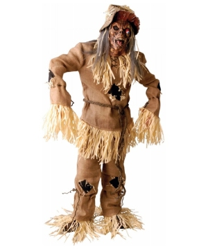 Mens Scarecrow Costume