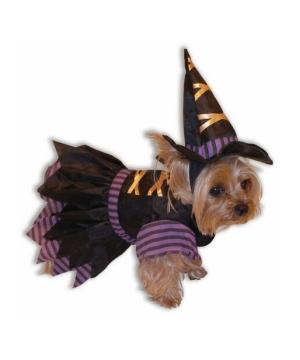 Hound Monster Hoodie Dog Costume