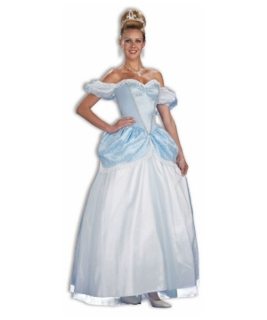 Womens Storybook Princess Cinderella Costume