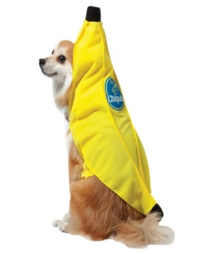 Chiquita Banana Pet Costume