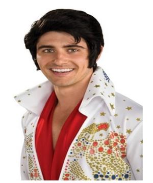 Elvis Men Wig