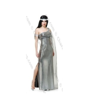 Goddess Night Womens Costume