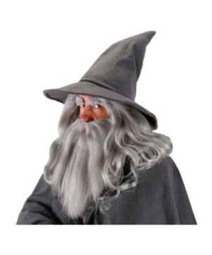 The Hobbit Gandalf Adult Hat