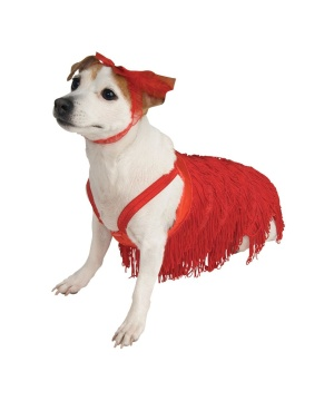 1920s Flapper Pet Costume