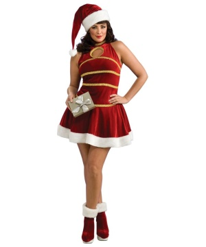 Ladies Santa plus size Costume