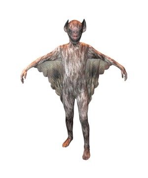 Boys Vampire Bat Morphsuit Costume