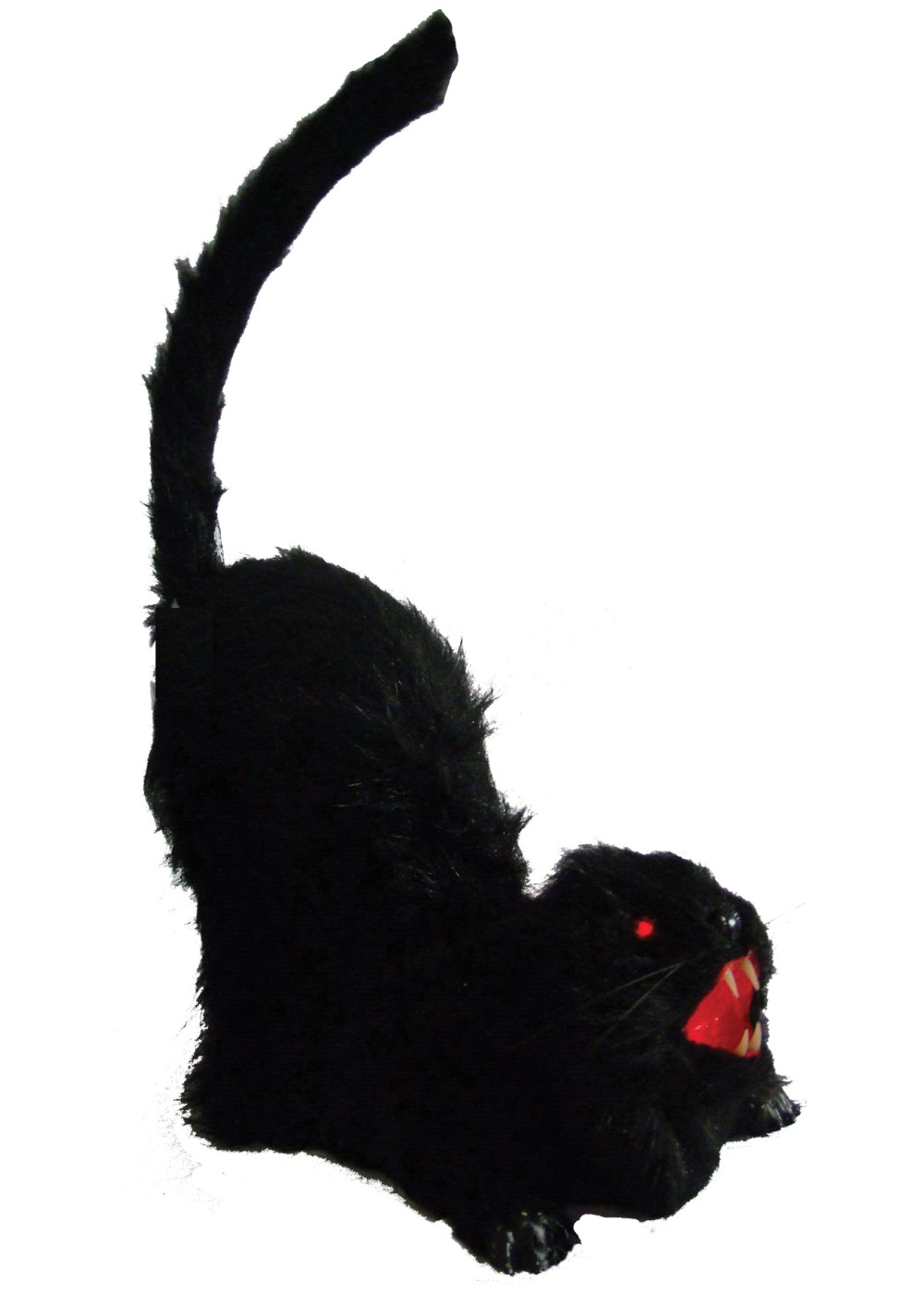 Animated black cat decoration decorations for Animated decoration