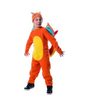 Boys Pokemon Charizard Kids Costume