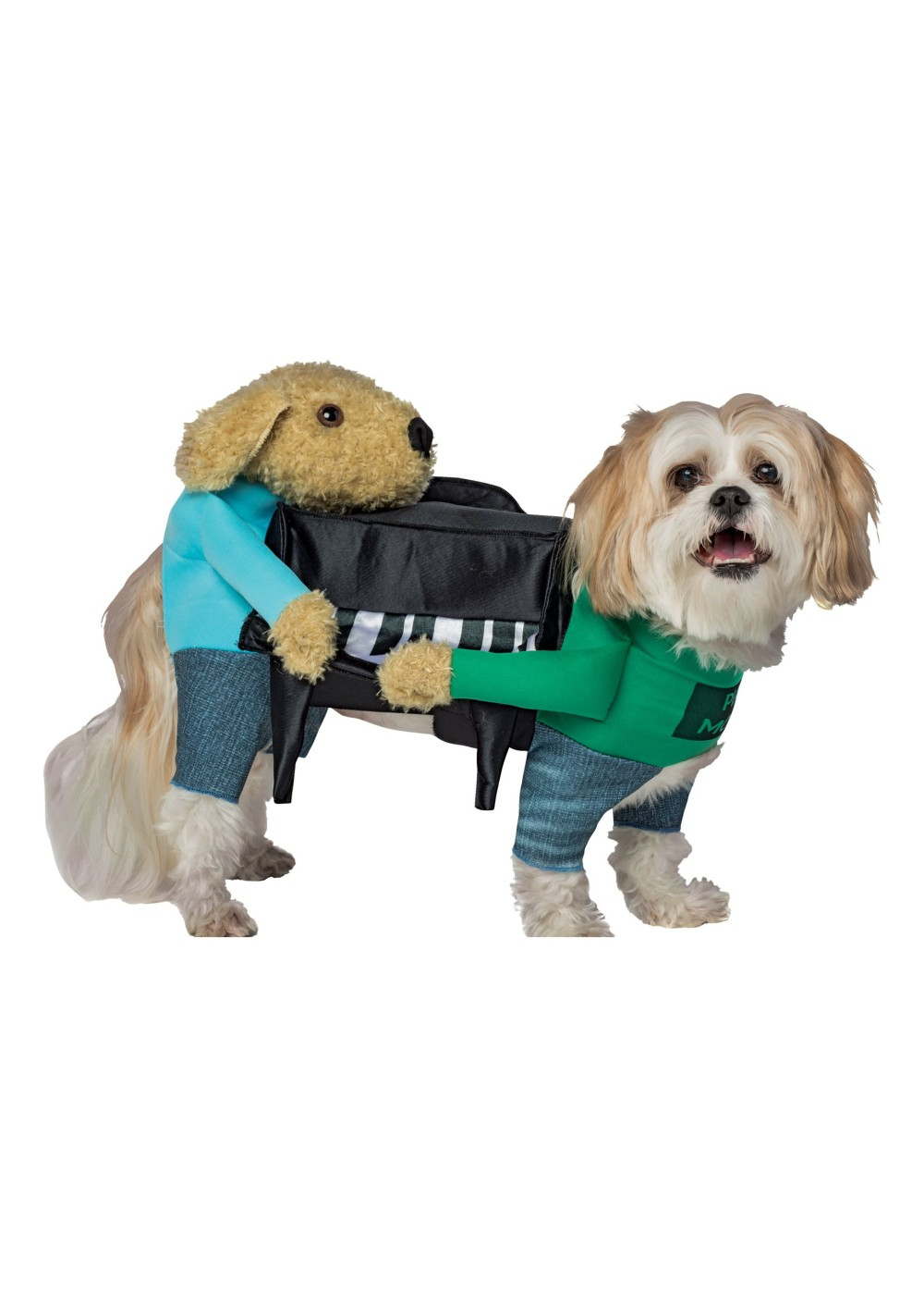 Capes For Small Dogs