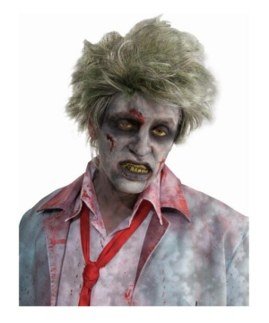 Grave Zombie Adult Wig
