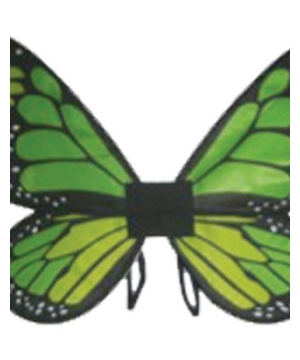 Green Satin Butterfly Girls Wings