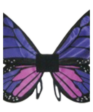 Kids Purple Satin Butterfly Wings