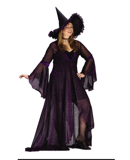 Adult Shimmering Witch Plus Size Witch Costumes
